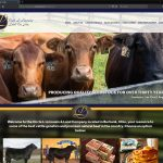Custom, Responsive Microsoft .NET & SQL Server Website for Circle L Farm near Akron, Ohio